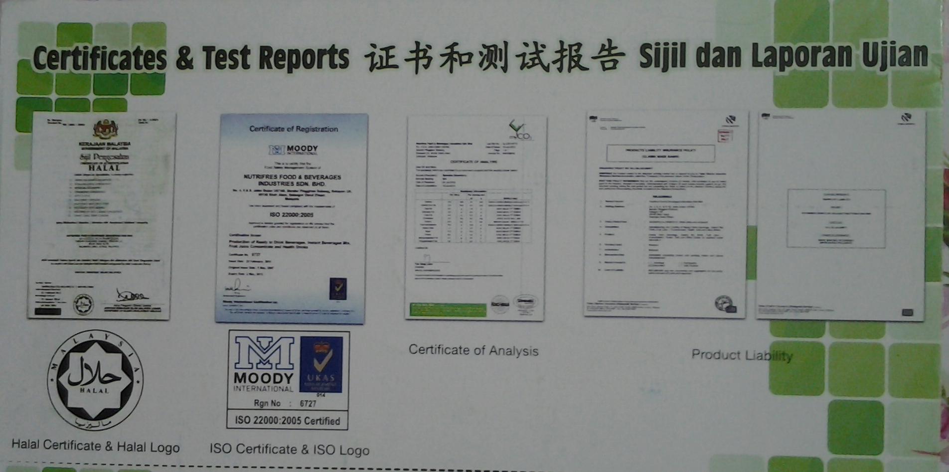 Spirulina report