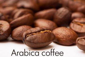 arabica coffee